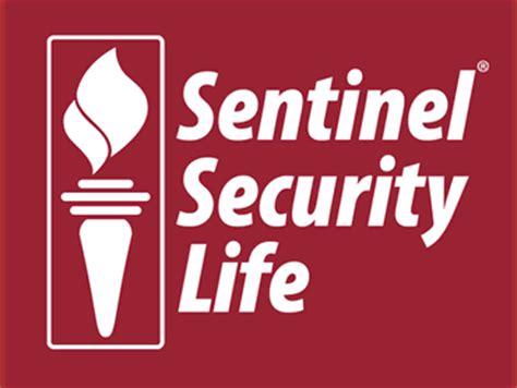 Short essay about senior high school life insurance